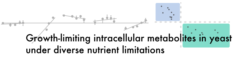 Growth-limiting intracellular metabolites in yeast growing under diverse nutrient limitations.